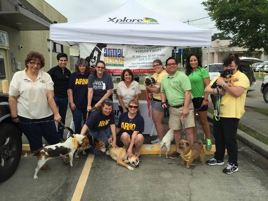 Dog Adoption Events New Orleans