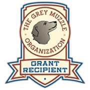 Grey Muzzle Grant Recipient